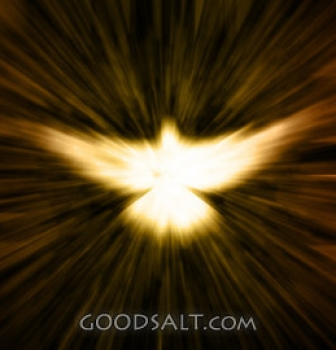 Learning to Soar with The Holy Spirit – Reprove The World of Righteousness