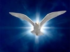 Learning to Soar with The Holy Spirit – Navigating Crises