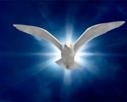 Learn to Soar with The Holy Spirit – SOAR