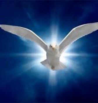 Soaring With The Holy Spirit – Reprove The World of Sin
